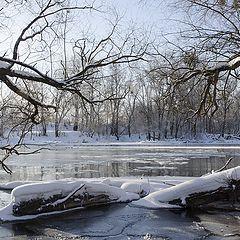 """фото """"Как замерзала река."""""""