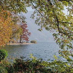 "фото ""У озера."""