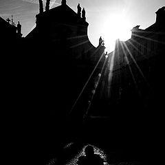 "photo ""Солнце, тени и свет"""