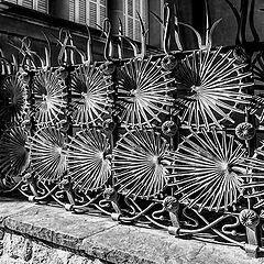 """photo """"Fence"""""""
