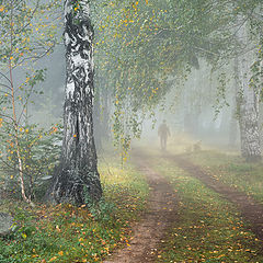 "photo ""Foggy / 0233_0593"""