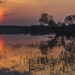 """фото """"Тихий вечер на озере Кодосно"""""""