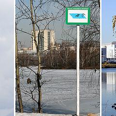 """фото """"Времена года"""""""