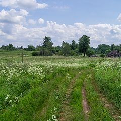 """photo """"Glushnevo, Opochesky district"""""""