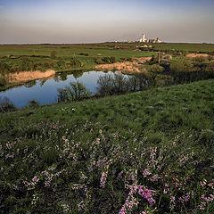 "photo ""Donetsk steppe"""
