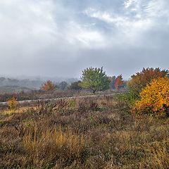"photo ""Autumn sketch"""