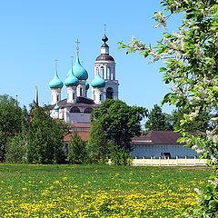 """фото """"Радость майского цветения, возле Толгского монастыря"""""""