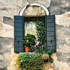 "photo ""windows"""