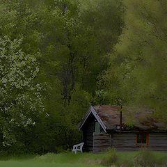 """photo """"A secret place"""""""