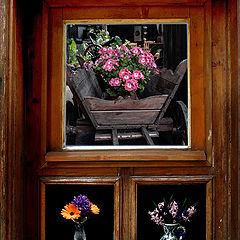 """photo """"окно"""""""