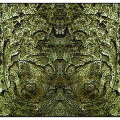 """photo """"brustdämonenbaum"""""""