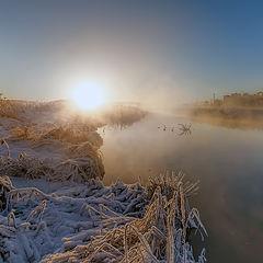 """фото """"Утреннее солнце"""""""