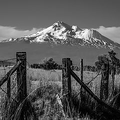 "photo ""Гора Шаста, Калифорния"""