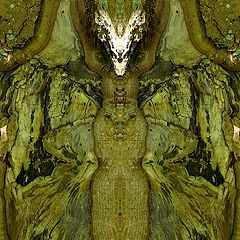 "photo ""tree spirits 02"""
