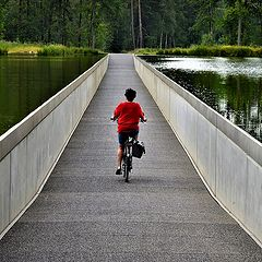 """фото """"Cycling through the water"""""""