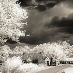 """фото """"My first infrared photo"""""""