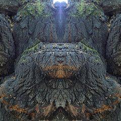 """photo """"der erleuchtete - the enlightened"""""""