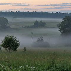 """фото """"Настоящий туман"""""""
