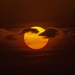 """photo """"A star named the sun..."""""""