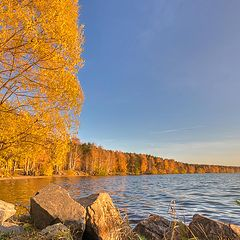 "photo ""Gold autumn"""