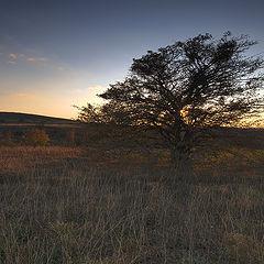 "фото ""Осень, вечер, ..."""
