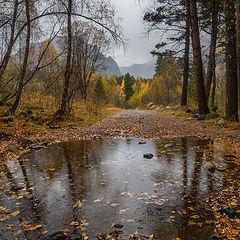 """фото """"В Терсколе дождь"""""""