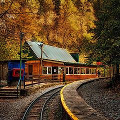 "photo ""Around the bend - Autumn"""