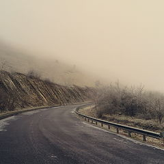 "photo ""On the way to the fog"""