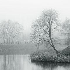 "фото ""..в туманах декабря.."""