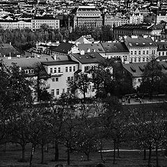 """photo """"Прага и пара"""""""
