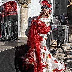 "фото ""Фламенко на открытом воздухе"""