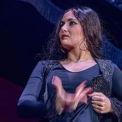 "photo ""Flamenco in Theater"""
