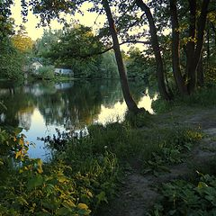 "photo ""Path along the pond"""