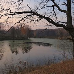 "photo ""Path along the pond (2)"""