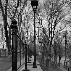 "photo ""Lines of the Dark Park. Narva"""