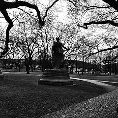"""photo """"Статуи и деревья"""""""