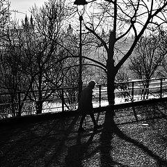 """photo """"Деревья и фигура"""""""