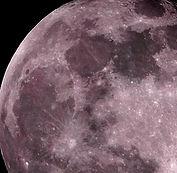 "photo ""Rose Moon"""
