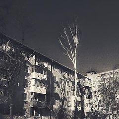 """фото """"Западный МКР"""""""