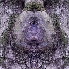 "photo ""evil holes"""