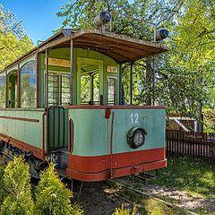 """photo """"A Streetcar at the Natural Environment"""""""