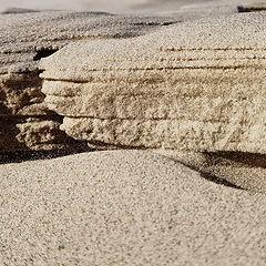 """фото """"...О золотой песчинке, затерянной в море простого песка"""""""
