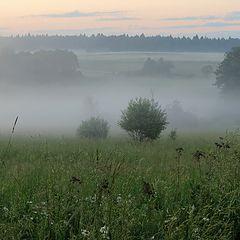 """фото """"Настоящий туман (4)"""""""