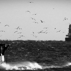 "photo ""the fishermen: coming back home"""