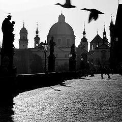 """photo """"Утро на Карловом мосту"""""""