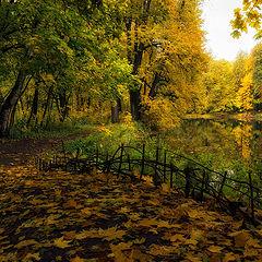"""фото """"Скоро осень"""""""