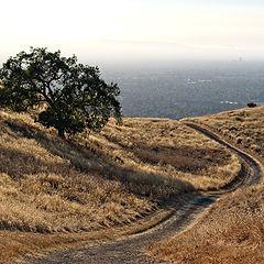 "photo ""Вид на Сан Хосе с горы"""