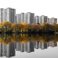 """фото """"Осень. Симметрия"""""""