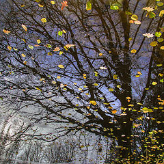 """фото """"Осень улетает..."""""""