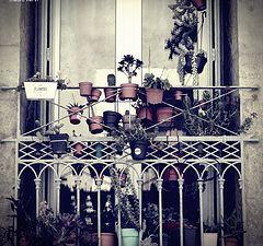 """photo """"balcony"""""""